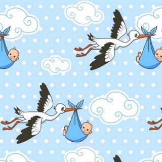 7e4b0c8b1a1 Bavlněné plátno Čáp modrý